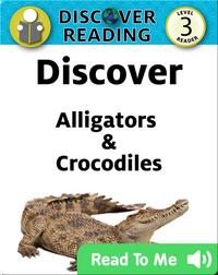 Discover Alligators & Crocodiles