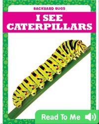 I See Caterpillars