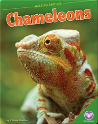 Amazing Reptiles: Chameleons