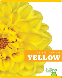Colors In Nature: Yellow