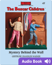Mystery Behind the Wall