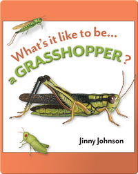 What's It Like To Be A Grasshopper?