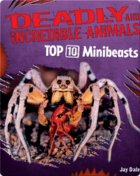 Top 10 Minibeasts