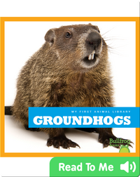 My First Animal Library: Groundhogs