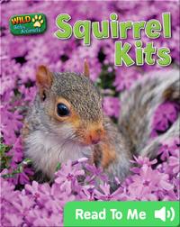 Squirrel Kits