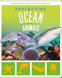 Protecting Ocean Animals