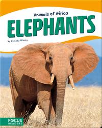 Animals of Africa: Elephants