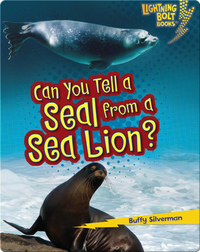 Can you tell a Seal from a Sea Lion?