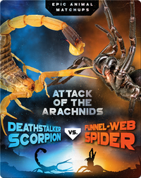 Deathstalker Scorpion vs. Funnel-Web Spider