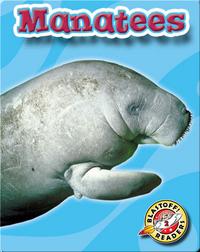 Manatees: Oceans Alive
