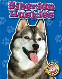 Siberian Huskies: Dog Breeds